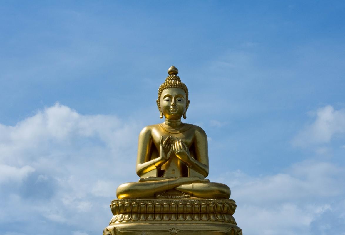 Bodhi 002